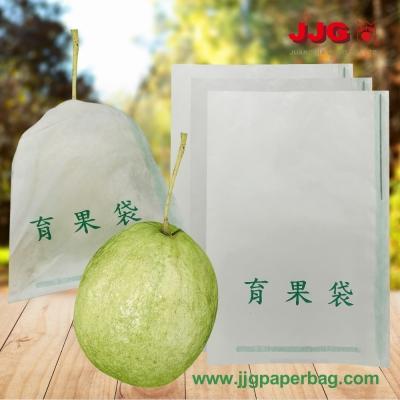 Guava Bag