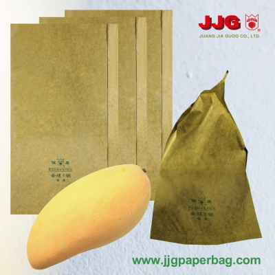 RT24-4538-BL Mango bag